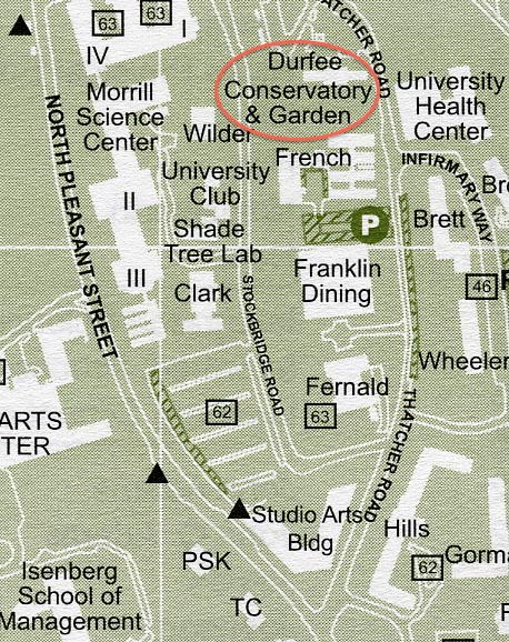 Close up Map of Durfee