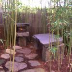 Stone Bench in Tropical House